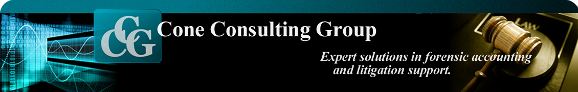 Cone Consulting Group